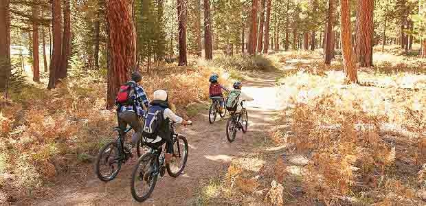 A family made up of two parents and two children biking through a wooded trail in the forest.