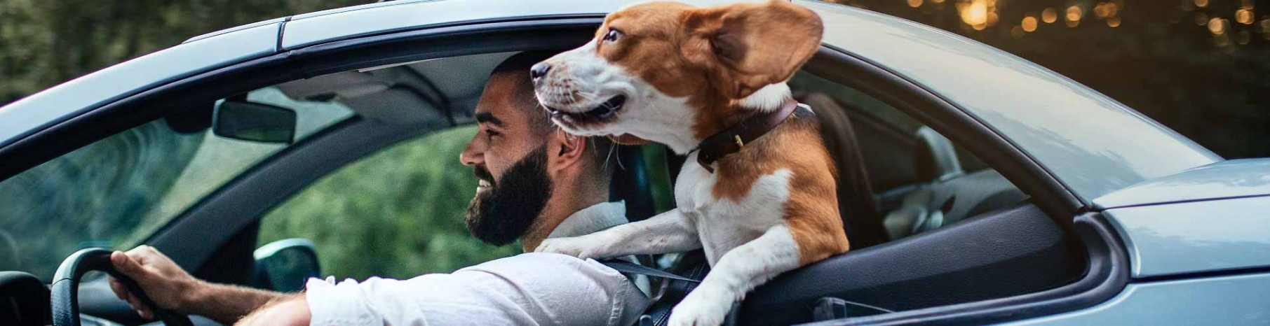 Image of a man driving a blue card with his dog as a passenger with his head out the window.