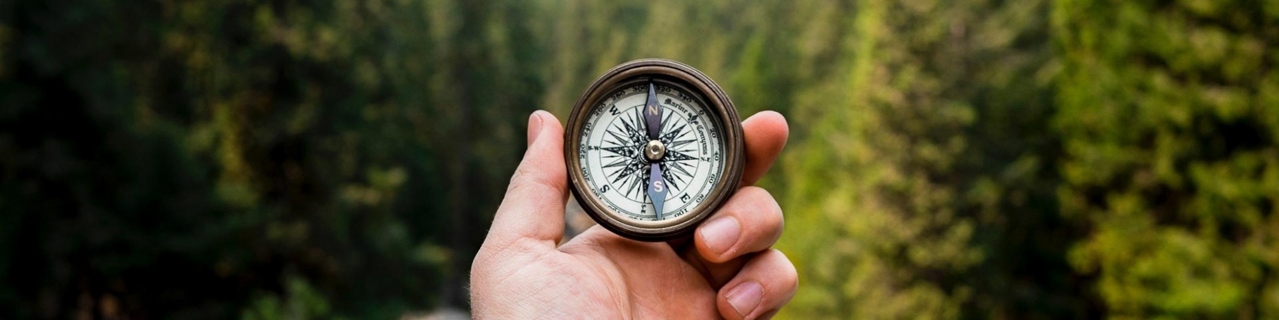 Image of a hand holding a compass in wooded area.